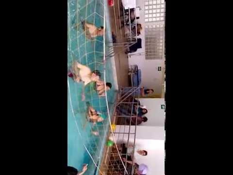 Voley en piscina con personas amputadas unilateral de miembro inferior.