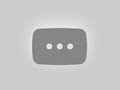 Cute Golden Retriever Puppy Plays In First Snow