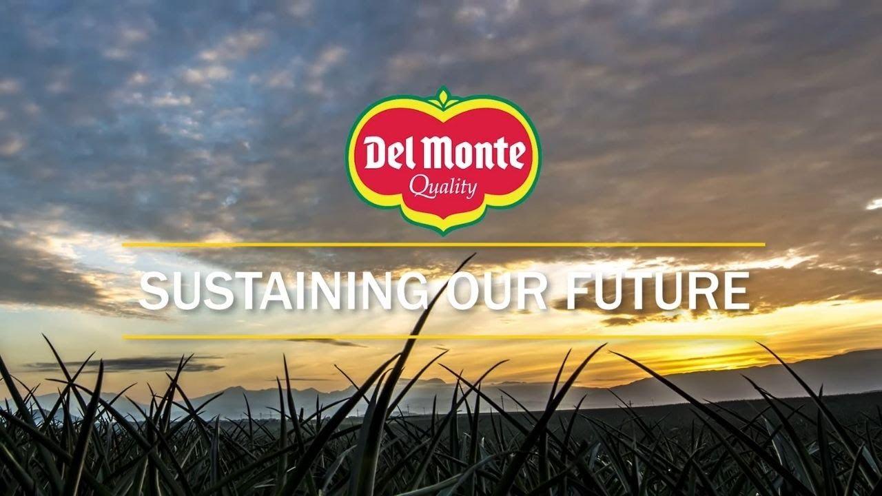 dmpi sustainability video