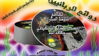 يعاهد الله على ترك المعاصي ويعود-الشيخ الشنقيطي