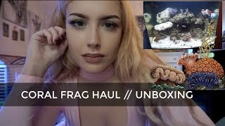 getlinkyoutube.com-CORAL FRAG HAUL (Live Corals Shipped to My House)