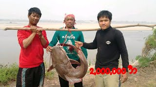 getlinkyoutube.com-ปลากดคัง แห่งลุ่มแม่น้ำโขง