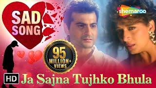 getlinkyoutube.com-Ja Sajna Tujhko Bhula - Raja Songs - Madhuri Dixit - Sanjay Kapoor - Udit Narayan - Alka Yagnik