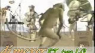 mauno ya wanyama