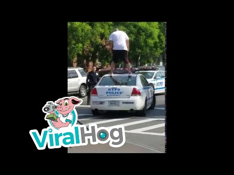 Harlem Man vs. Police