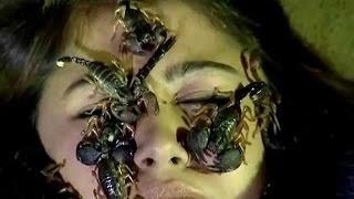 getlinkyoutube.com-Living On The Edge 2016 | Most Dangerous Video | Waqar Zaka