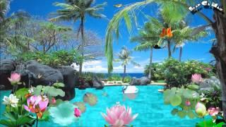 getlinkyoutube.com-Share Style Dam Sen Tinh Yeu 1,2