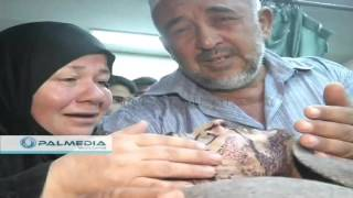 getlinkyoutube.com-#HEBRON الصور الاولى للشهيد ضياء عبد الحليم التلاحمة