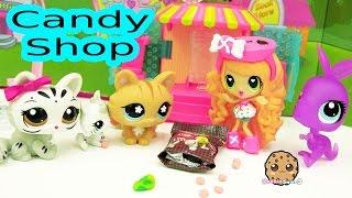 getlinkyoutube.com-Out Of Candy - Kawaii Crush Doll & Littlest Pet Shop LPS Toys Play Video , Cookieswirlc