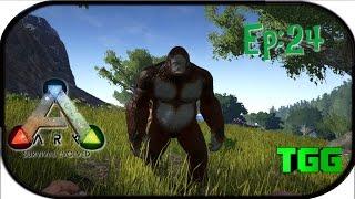 getlinkyoutube.com-Ark: Survival Evolved Ep:24 Update on Series Taming Gigantopithecus