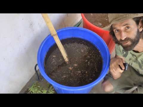 Which is Better - Stirred Compost Tea or Pump Bubbled Teas? - Here are the Results!