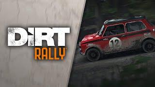 DiRT Rally - Flying Finland