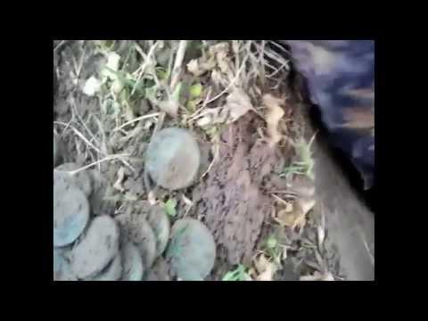Клад старинных монет царских времен