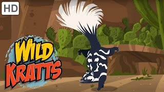 Wild Kratts - You Have Been Skunked!