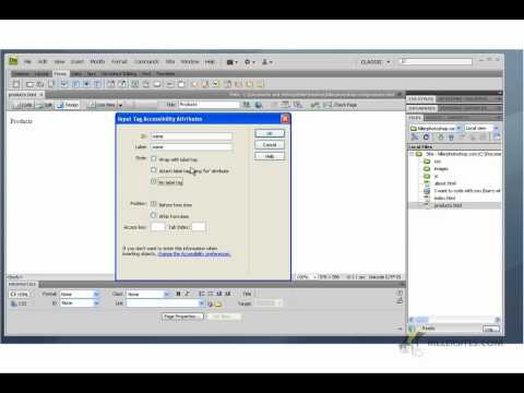 Dreamweaver CS4 Basics - Creating HTML Forms part 1