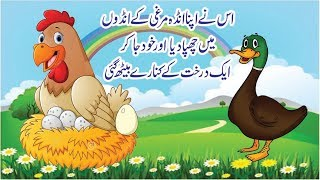 Story of Duck and His Egg | Urdu Community | Story 01