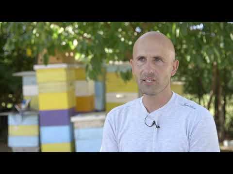 Uzgoj pcela i proizvodnja meda u Mladenovcu - U nasem ataru 860