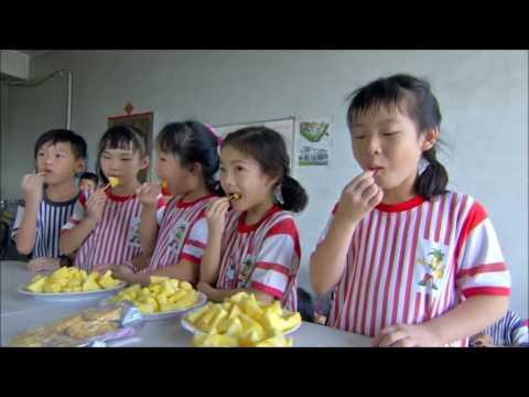 華視報導-保東國小校本課程-鳳梨