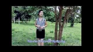 getlinkyoutube.com-Hmong new song 2014 nkauj iab lauj   Nco vibnais