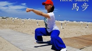 getlinkyoutube.com-WUSHU TUTORIAL: Horse Stance