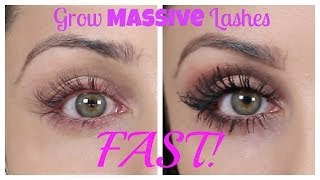 getlinkyoutube.com-How To Grow Massive Eye Lashes FAST | Kristi-Anne Beil