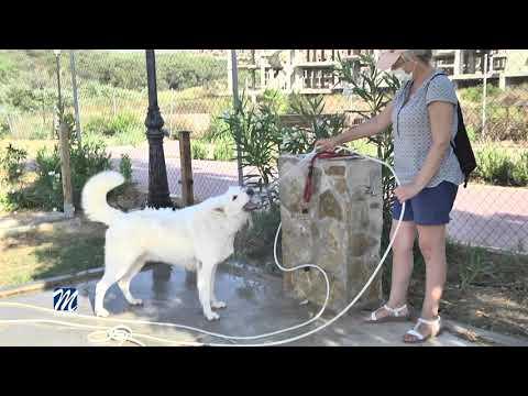 Mejoras en el Parque Canino