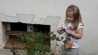 Anna ogrodnik