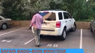 Safari bado