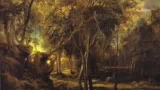 Violin Concerto in A minor, BWV 1041 I