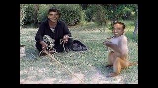 getlinkyoutube.com-Pakistani President  Asif Zardari funny pic`s