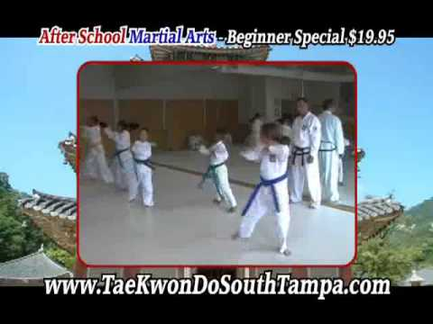 Traditional Tae Kwon Do Tampa    813 269 2252   Martial Arts Tampa