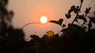 getlinkyoutube.com-พระอาทิตย์ยามเช้า