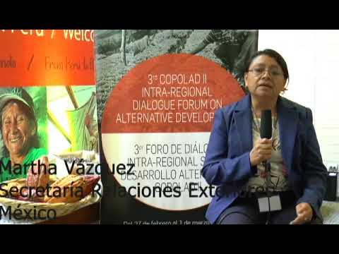 Martha Vázquez. SRE, México (II)