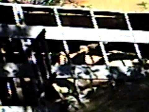 Caminhão Boiadeiro cai no RAMAL DO BOI   parte 2