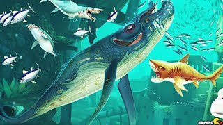 getlinkyoutube.com-Hungry Shark World -  New Hungry Shark Adventure Unlocked Pacific Map!