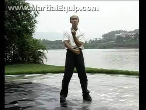 Wing Chun/Ving Tsun Forms Chum Kiu & Chi Sau/Sticky Hands