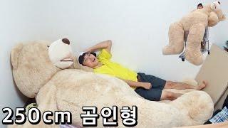 getlinkyoutube.com-250cm 곰인형 (Giant Teddy Bear) - 허팝