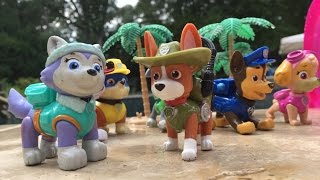 getlinkyoutube.com-Nick Jr.'s Paw Patrol Pups have a Hamptons Pool Party with new pup Tracker