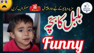 Bulbul Ka Bacha Poem | Funny | Watch Till End