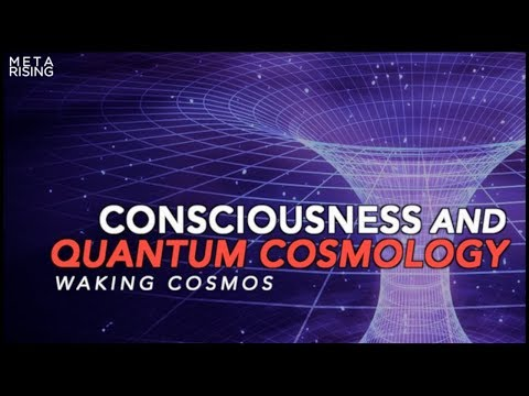 The Self-Excited Circuit | Consciousness Documentary | Waking Cosmos - Episode one