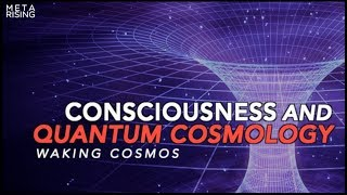 Consciousness and Quantum Cosmology ~The Self-Excited Circuit | Waking Cosmos - Episode 1