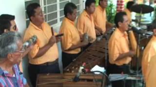 """getlinkyoutube.com-Perla de Chiapas """"La abeja miope"""""""