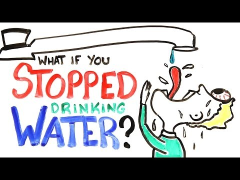 What If You Stopped Drinking Water? @mitchellmoffit @whalewatchmeplz