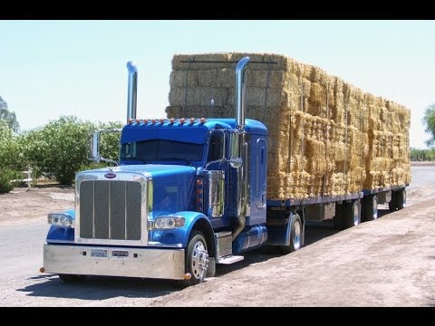 Hay Trucker Legends of California,