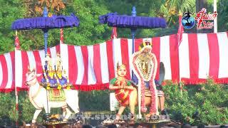 நல்லூர் கந்தசுவாமி கோவில் ஏழாம் திருவிழா மாலை 31.07.2020