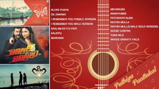 Latest Top Malayalam Hit songs 2015 from Premam | Lailaa O Lailaa | Nee Na