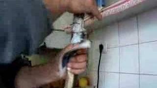 getlinkyoutube.com-yılan balığı yüzme