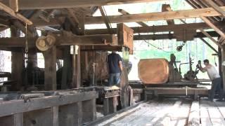 getlinkyoutube.com-Sawing A Large Log