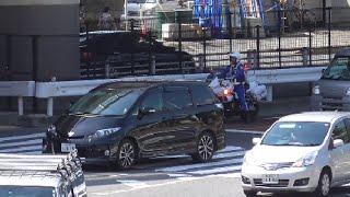 間一髪!女性白バイ隊員の目の前で左折レーンのトラックに釣られ信号無視しかけたエスティマ→赤色灯点灯で臨戦態勢の交通機動隊→ギリ気付きセーフ!Japanese Motorcycle police