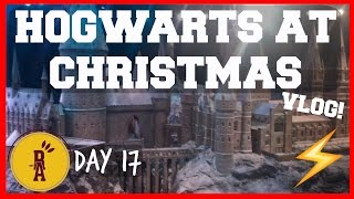 CHRISTMAS AT HOGWARTS | DAY 17 | Ryan And Aiden